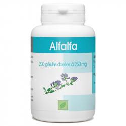Alfalfa 250 mg