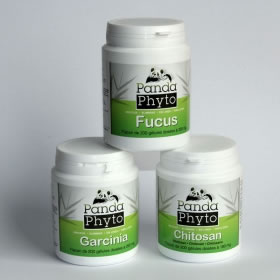 Pack post-dieta total : Chitosano + Fucus + Garcinia